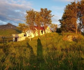 Ednas hus - Lofoten