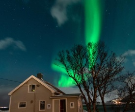 Lofoten Feriehus- Storøy