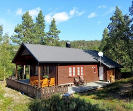 Holiday Home Sandtjønn (TEM019)