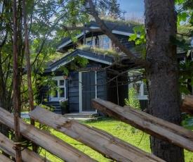 Hemsedal Mountain Cottage