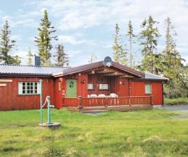 Five-Bedroom Holiday Home in Sjusjoen