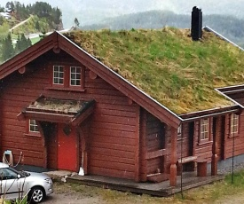 Three-Bedroom Holiday home in Åseral 2