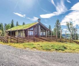 Three-Bedroom Holiday Home in Sjusjoen